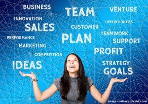 businessopportunitiesentrepreneur south africa