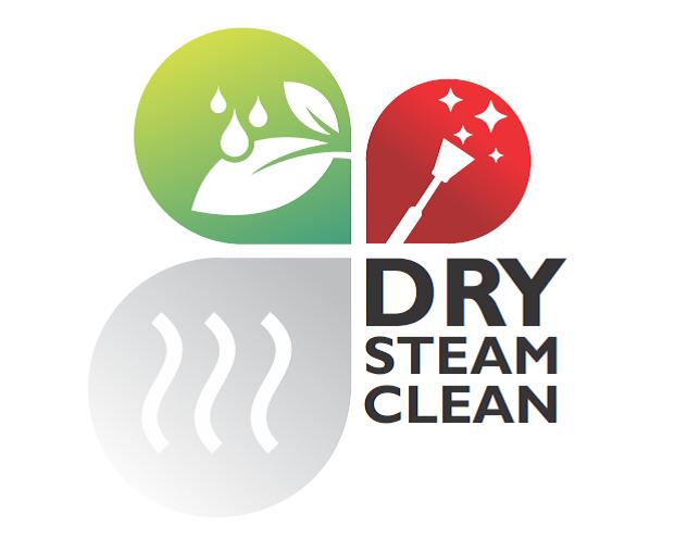 dry steam clean logo polokwane